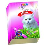 Lolo pets - Iarba pentru pisici - 100 g