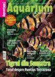 Revista Aquarium & terrarium Nr. 12