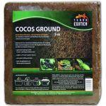 Terra Exotica - Humus Block - 5 kg  fine 1002166