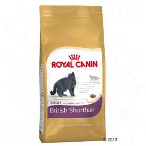 Royal Canin Adult 34 British Shorthair - 10 kg