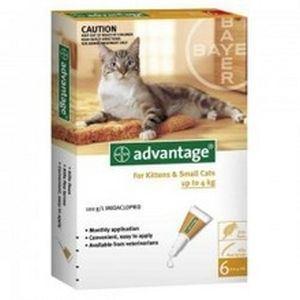 Bayer - Advantage 40 Spot On <4 kg - 1 buc