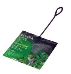 Hagen - Minciog verde 12 cm