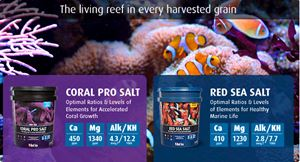 Red Sea - Coral Pro Salt - 1 kg