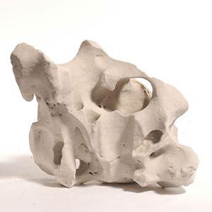 Aquadeco - S 004 White holestone 10-60 cm