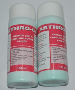 Arthro Gel - 100 ml