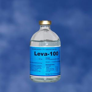 Leva - 100 ml