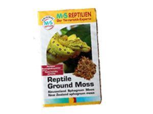 MS Reptilien - Muschi Sphagnum Moss New Zealand - 100 g